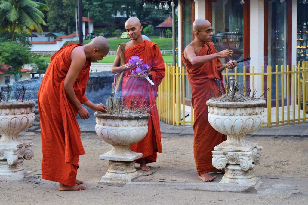 Deze afbeelding heeft een leeg alt-attribuut; de bestandsnaam is Sri-Lanka-53-1-1024x683.jpg