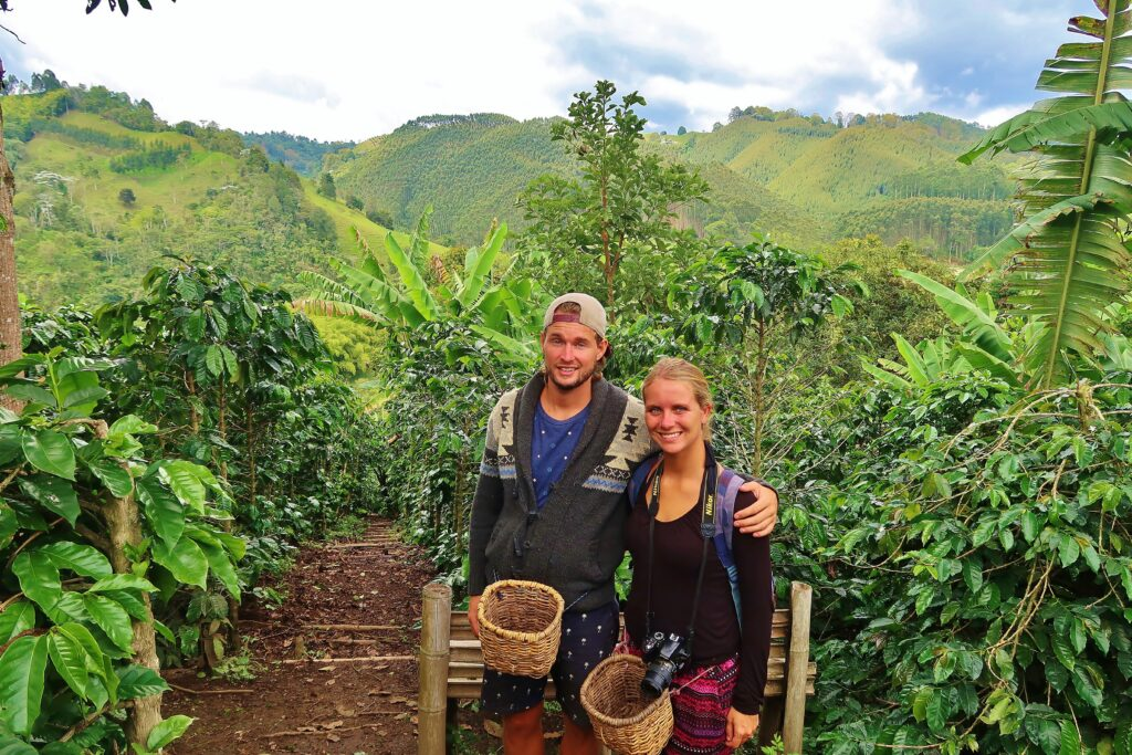 Backpacken Colombia zelf koffie telen op een coffee farm