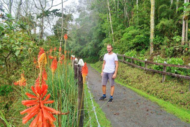 Backpacken in Colombia: Salento en Valle de Cocora