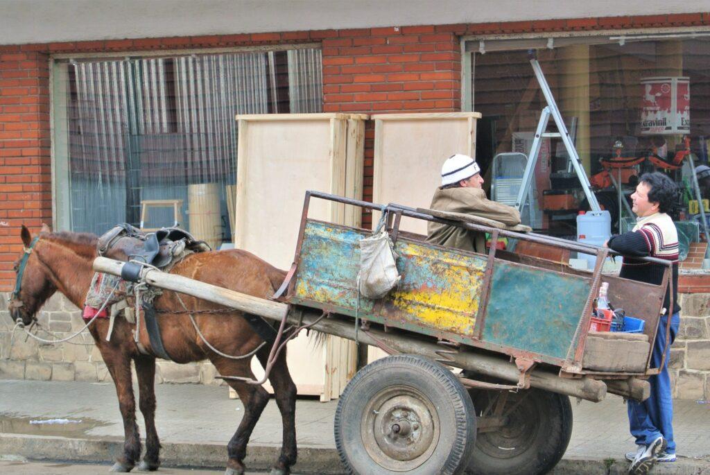 Een paard en wagen op straat in Salto, Uruguay.