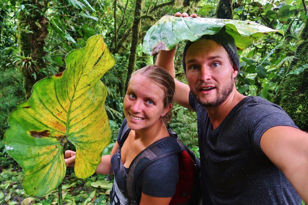 We schuilen onder grote bladeren in de jungle van Monteverde