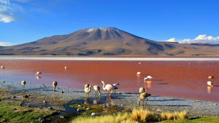 Reizen na Corona: top 10 goedkope landen in 2020