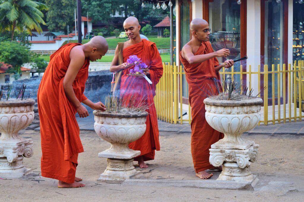Reizen na Corona is goed mogelijk in Sri Lanka
